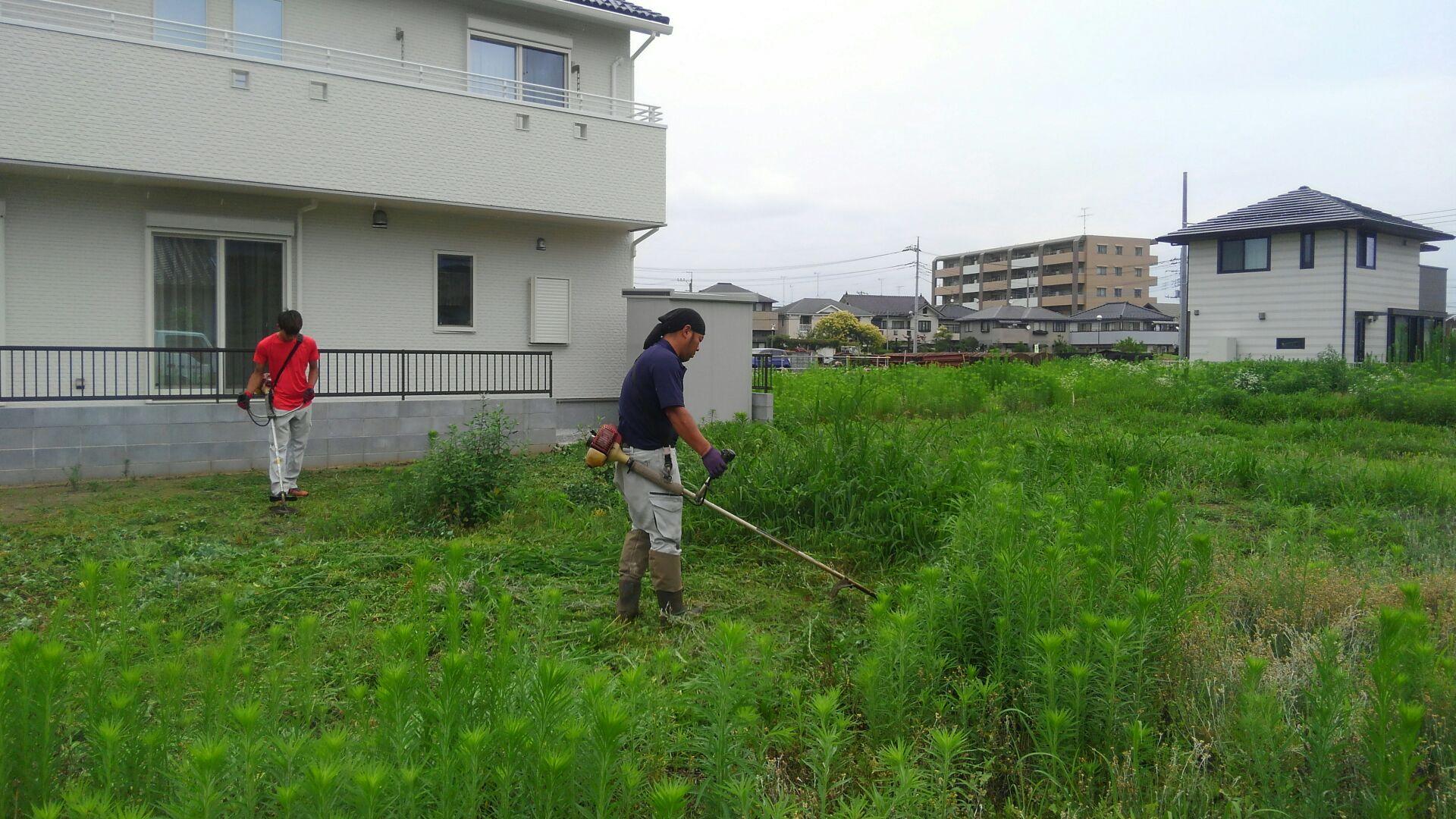 地盤調査の前に草刈にきました。